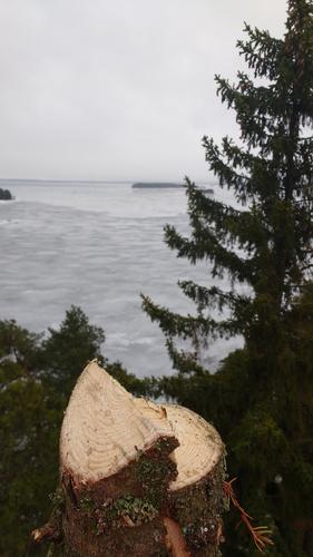 Kiipeilykaataminen Tampere